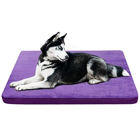 JoicyCo - Cama para Perro, tamaño Mediano, colchón para Perro ...