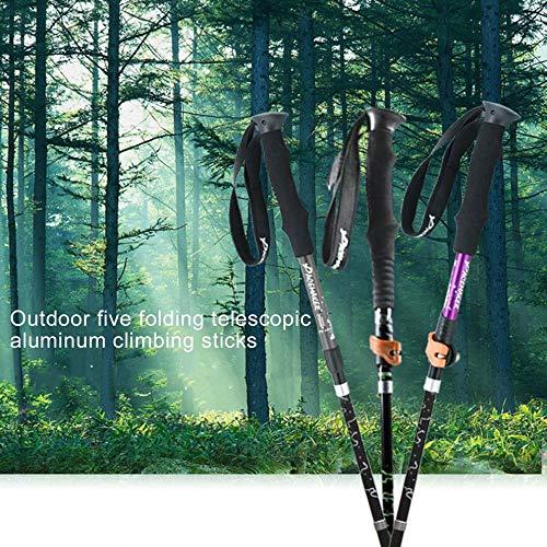 Tmalltide Outdoor 5-Folding Telescopic Aluminum Alloy Alpenstock with Outer&Inner Lock by Tmalltide (Image #2)