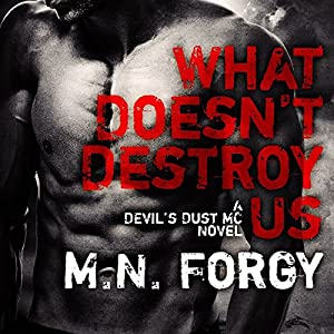 What Doesn't Destroy Us Audiobook