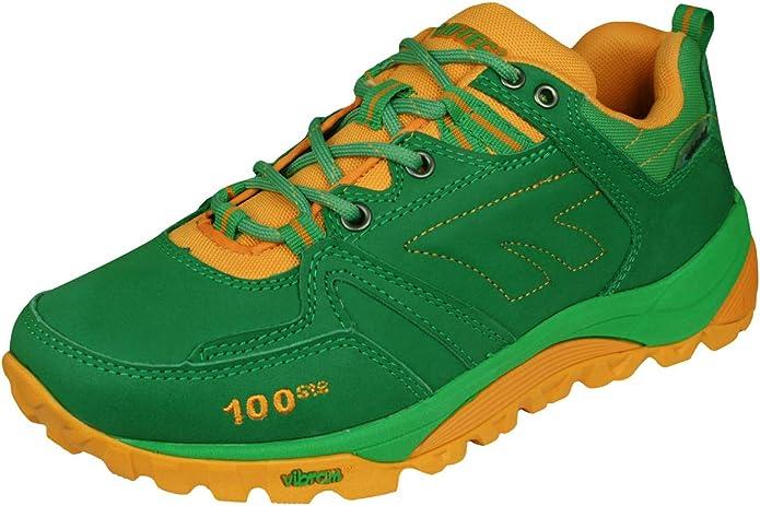 R darse cuenta entrega  Hi Tec V Lite Sphike Nijmegen Low Womens Walking/Trail Trainers:  Amazon.co.uk: Shoes & Bags