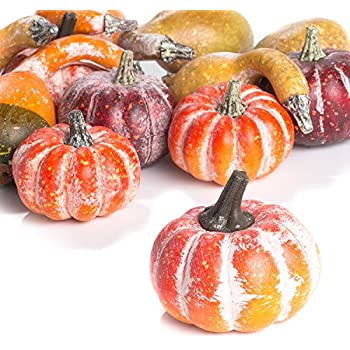 Factory Direct Craft Package of 12 Assorted Artificial Frosted Pumpkins and Gourds for Autumn, Fall and Thanksgiving Displays