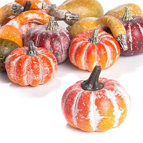Factory Direct Craft Package of 12 Assorted Artificial Frosted Pumpkins and Gourds for Autumn, Fall and Thanksgiving Displays by Factory Direct Craft