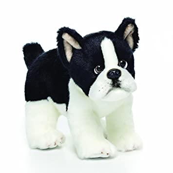 Amazon Com Nat And Jules Alert Standing Small Boston Terrier Dog