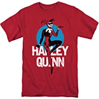 Batman: The Animated Series Adult T Shirt & Stickers