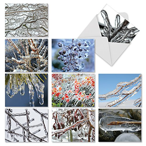 Christmas Tree Photo Card (M2279 Nature On Ice: 10 Assorted Christmas Note Cards Featuring Close-Up Photos Of Icy Tree Limbs, w/White Envelopes.)