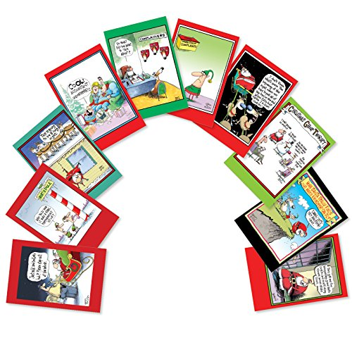 A5646XSG-B1x10 'Flying Reindeer by The Flying McCoy Brothers': Assorted Box of 10 Humor Christmas Cards; With Envelopes (10 Designs, 1 Card Per Design)