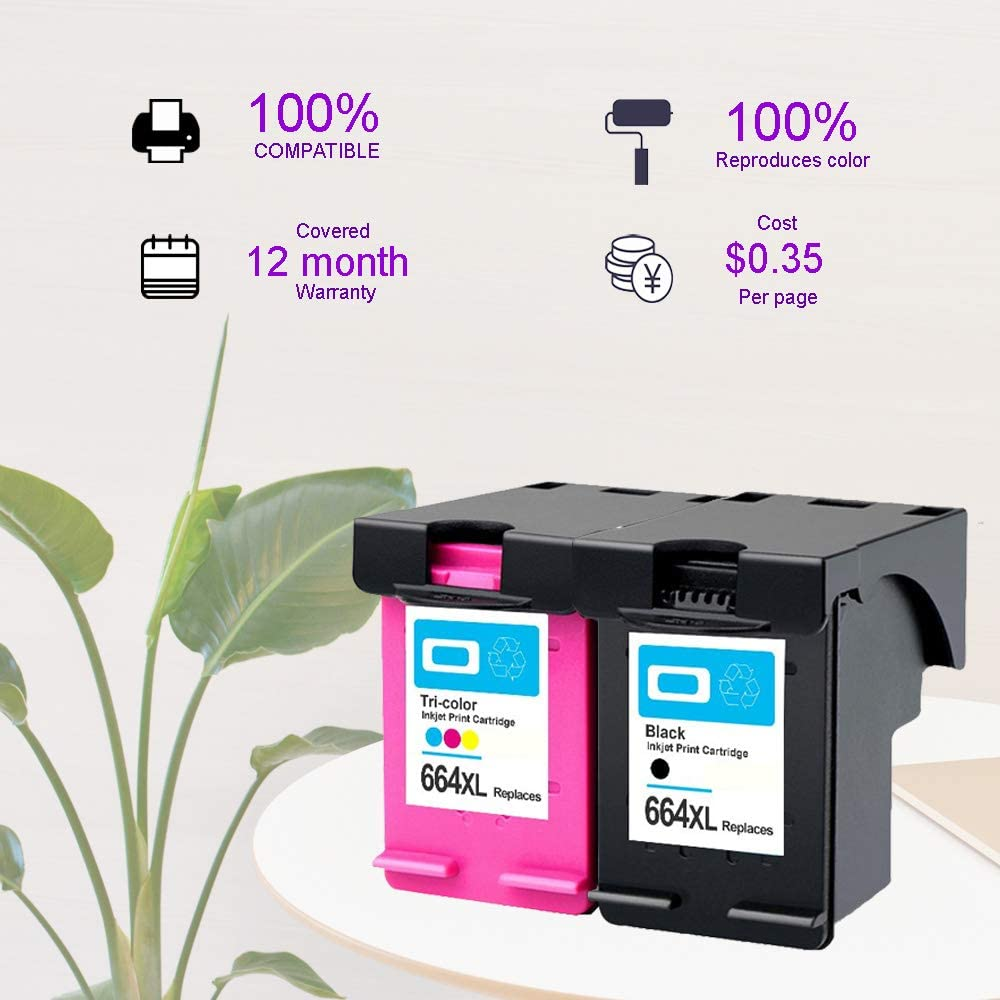 2SET 4PK TengSheng Remanufactured Ink Cartridge Replacement for HP664 Used for HP DeskJet 1115 2135 3635 1118 2138 3636 3638 4536 4676 Printher