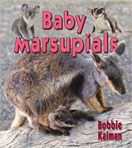 Baby Marsupials (It's Fun to Learn About Baby Animals)