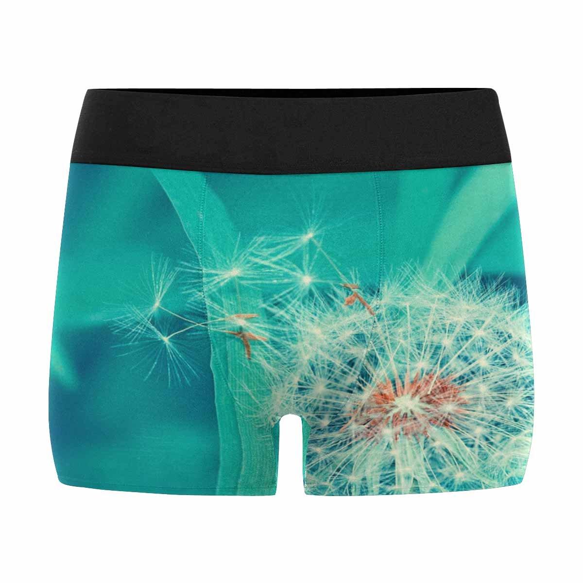 INTERESTPRINT Mens Boxer Briefs Underwear Dandelion XS-3XL
