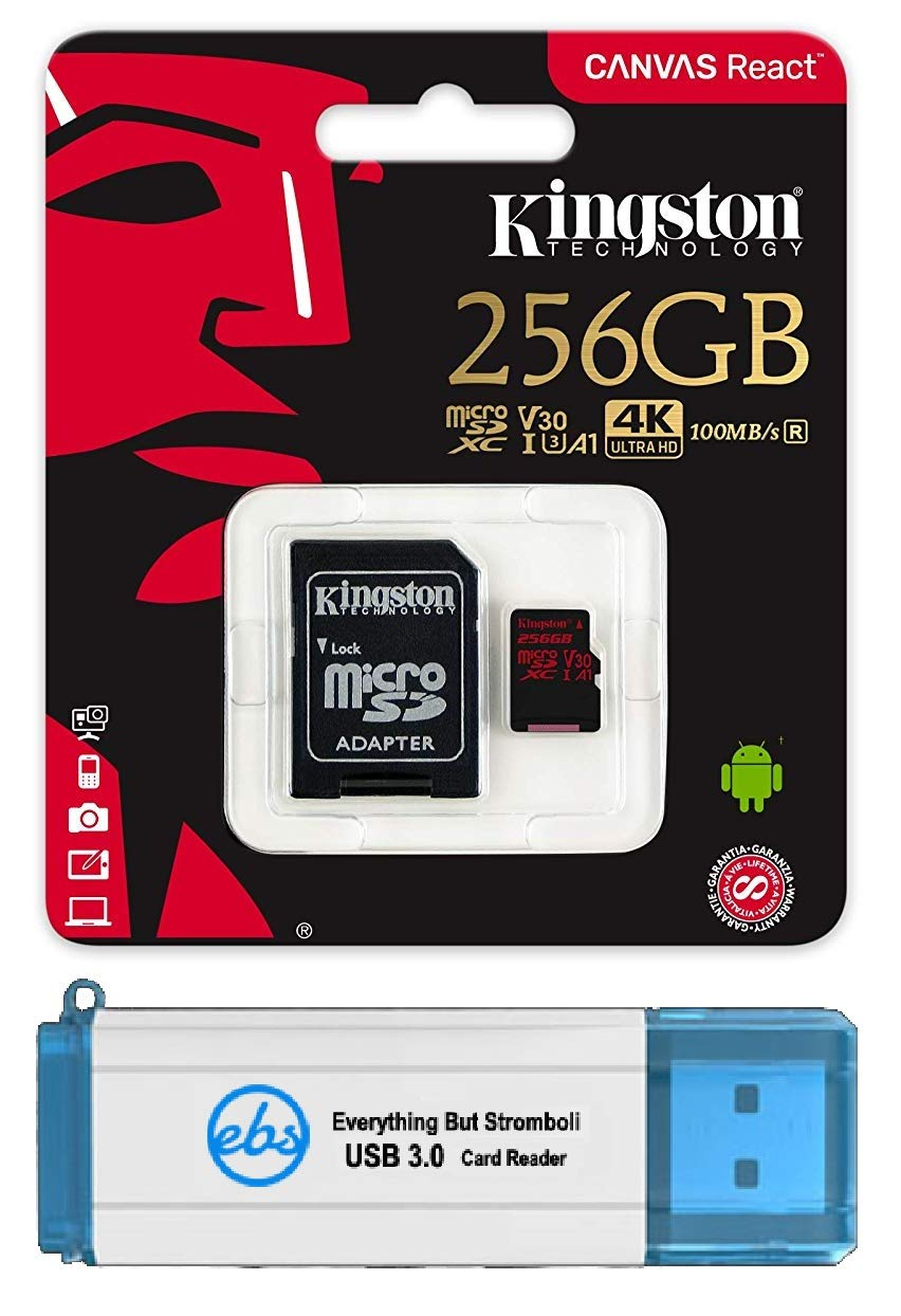 Kingston 256GB SDXC Micro Canvas React Memory Card and Adapter Bundle Works with GoPro Hero 7 Black, Silver, Hero7 White Camera (SDCR/256GB) Plus 1 Everything But Stromboli (TM) 3.0 TF/SD Card Reader by Kingston