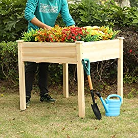 "PHI VILLA Raised Garden Bed Elevated Planter Box for Vegetable/Flower/Fruit/Herb 3 ★100% Natural Material★ This garden bed is made of untreated Cedar wood, no addictive added, environmentally friendly, no harm to human body ★Sturdy and Durable Garden Bed★ Elevated design protects your plants away from rabbits, gophers and pets. 0.6"" thick solid wood, strong enough to support your plants. Weight capacity: 220 lbs ★Easy Working Height★ Stands at 31.9"", no longer need to bend over when gardening, minimize back and knee strain"