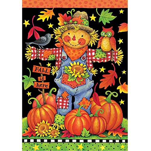 Scarecrow and Pumpkins - Fall Garden Size, 12 Inch X 18 Inch Decorative Flag