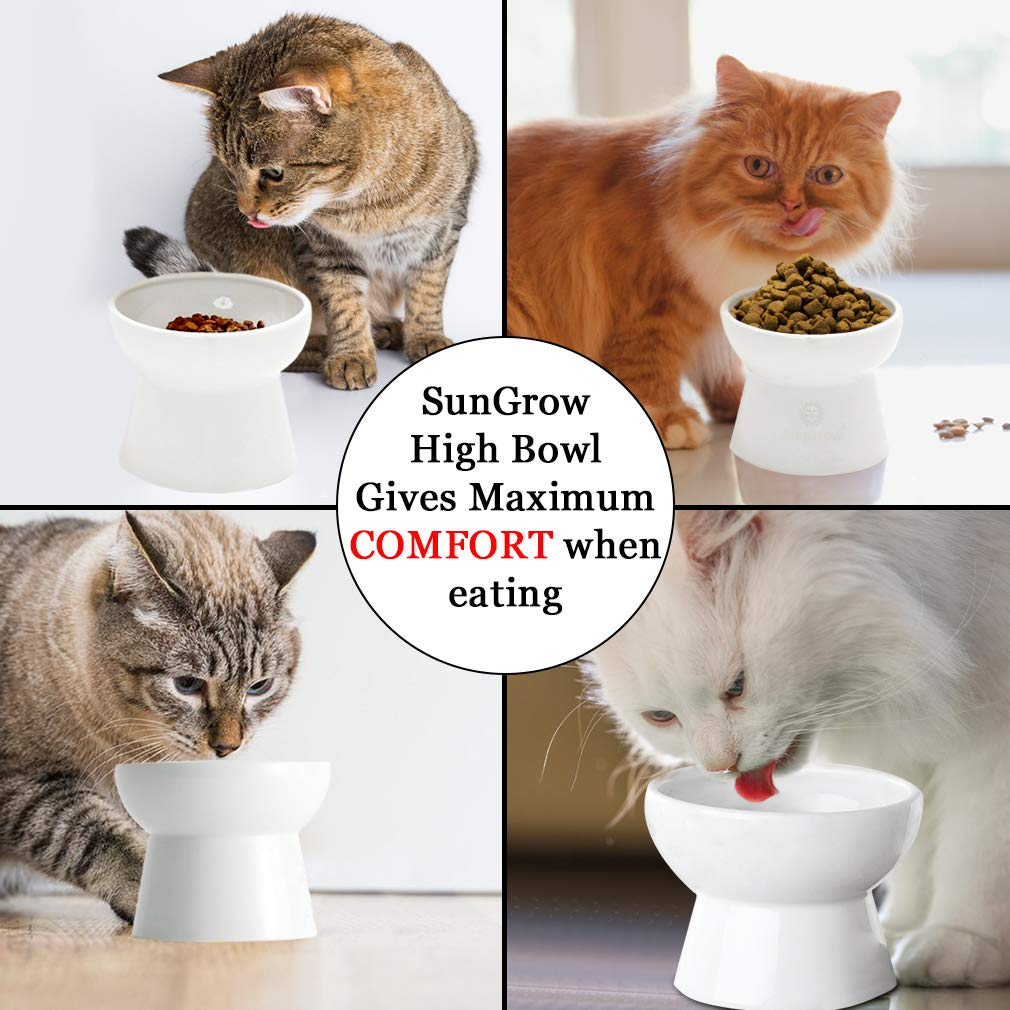 Cat bowl with stand --- Suitable eating height for pets – Easy cleaning for you – Eco-friendly, raised food bowl – Stress-free meal time for your cats - Stoneware feeding station