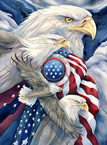 USA 1000 - American Eagles Puzzle By Jody Bergsma