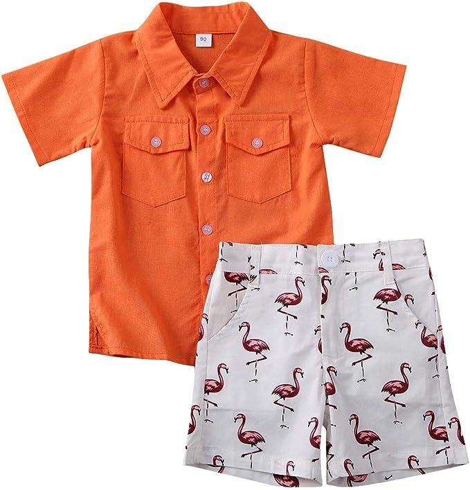 Niñito Bebé Trajes Cortos Camisas de Verano de Manga Corta para Niños Ropa Conjuntos de 2 Piezas: Amazon.es: Ropa y accesorios