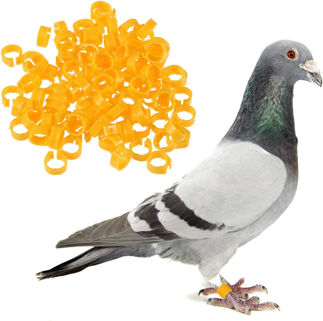 UEETEK 100pcs Plastic Clip On Leg Rings Foot Tag for Pigeons Small Poultry Bantam Chicks