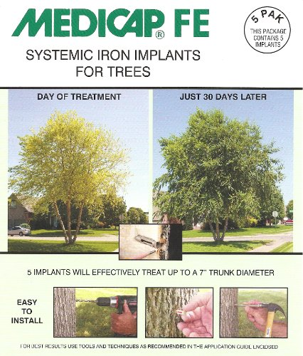 Medicap FE FE12X5 Systemic Iron Tree Implant, Pack of 5 ()