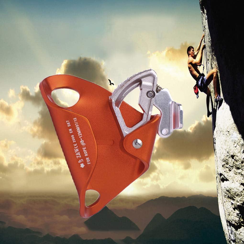 Elenxs - Baúl de Escalada para Escalada al Aire Libre, Cuerda ...