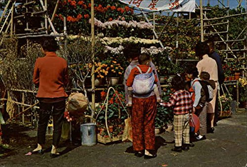 Hong Kong Postcard (Chinese New Year Bazaar - flower stalls China Hong Kong Original Vintage Postcard)