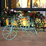 European-style iron flower frame floor-style multi-layer creative bicycle flower rack ( Color : Light green )