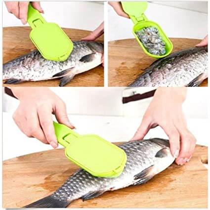 Amazon com | PAPWOO Fish Scales Remover Stainless Steel Fish