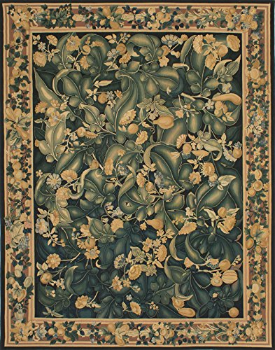 8'0'' X 10'0'' French Tapestry Traditional Black, Green Area by CarPet