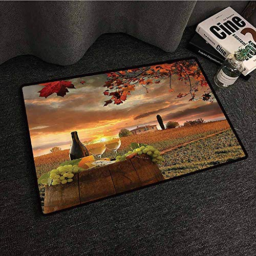 (Winery Decor Collection Entrance Door mat White Wine with Barrel on Vineyard at Sunset in Chianti Tuscany Italy Landscape Print Machine wash/Non-Slip W24 xL35 Orange Green)