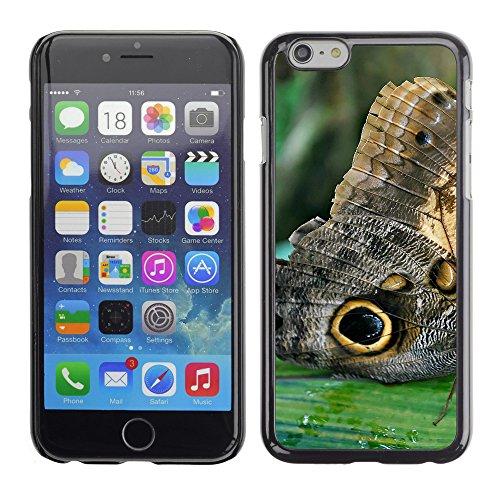 """Premio Sottile Slim Cassa Custodia Case Cover Shell // F00011944 papillon // Apple iPhone 6 6S 6G PLUS 5.5"""""""