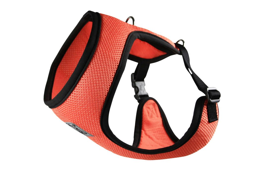 RC Pet Products Cirque Soft Walking Dog Harness, Small, Coral