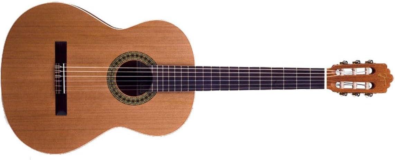 JOSE TORRES JTC-5: Amazon.es: Instrumentos musicales