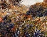 Pierre Auguste Renoir Algerian Landscape Aka The Ravine Of The Wild Women 38x30
