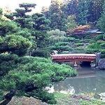Arriving Where You Are: Jinshan Asks About Nature | John Daido Loori, Roshi