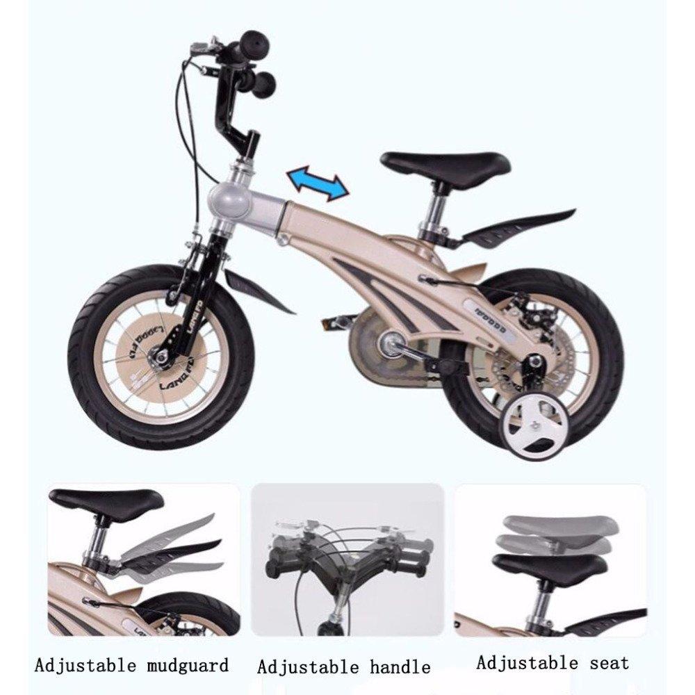 ADZPAB Bicicleta para niños niños niños 12/14/16 Pulgadas Niño niña 2-3-6 años Niña Aleación de magnesio Cochecito (Color : Metalico, Tamaño : 14Inches) 55b171