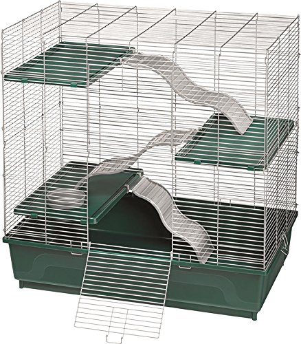 61r7Y9AFsPL - Kaytee My First Home Habitat Multi-Level for Exotics, 30 by 18-Inch