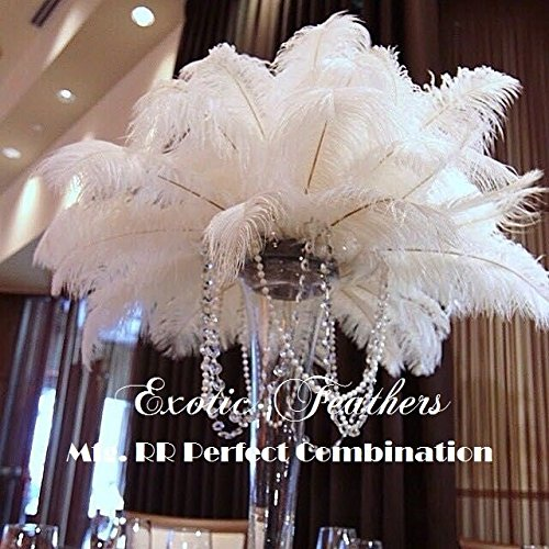 Special Sale WHITE OSTRICH Feathers Wholesale Bulk 12/14