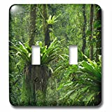 Danita Delimont - Forests - Indonesia, Bali. Green Tropical forest at Eka Karya Botanic Garden - Light Switch Covers - double toggle switch (lsp_225751_2)