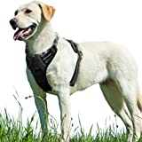 Eagloo Dog Harness No Pull, Walking Pet Harness with 2 Metal Rings and Handle Adjustable Reflective Breathable Oxford…