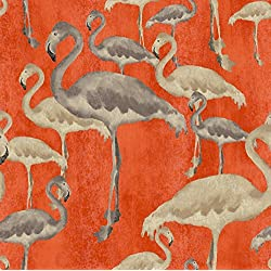 Arthouse, Orange Flamingo Beach Calypso Wallpaper, Modern Home Décor