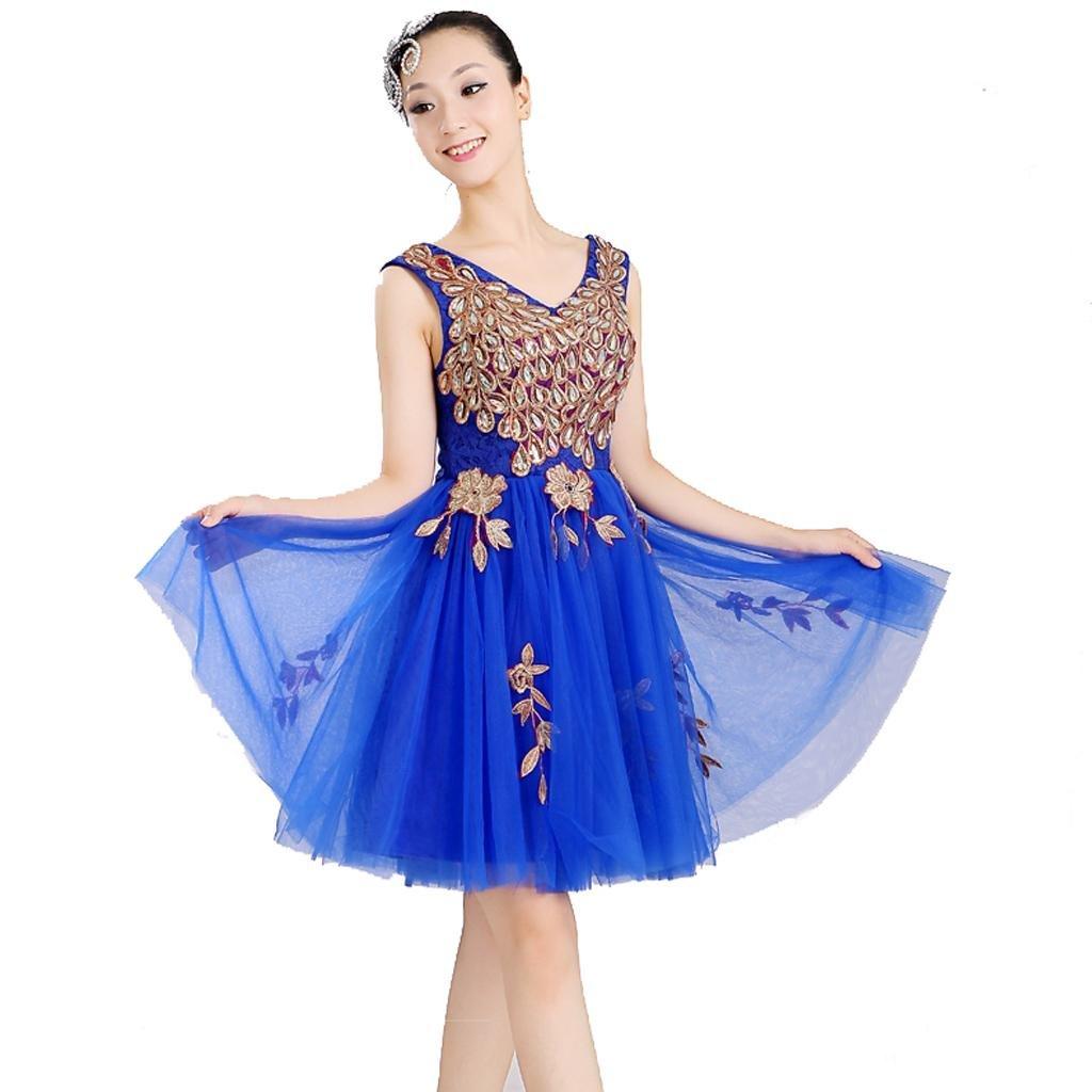 Byjia Modern Dance Dance Dance Kleider Netz Yern Stickerei Sleaveless Erwachsener Frauen Prinzessin Hochzeit Klassische Eingangschor Bühnen Nationales Performance Kostüm Big Rock B072BPJGZX Bekleidung Ruf zuerst f3a160