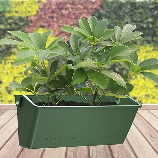 Maceta vertical para colgar en la pared, plantas verdes suculentas, jarrón para interiores y exteriores: Amazon.es: Jardín