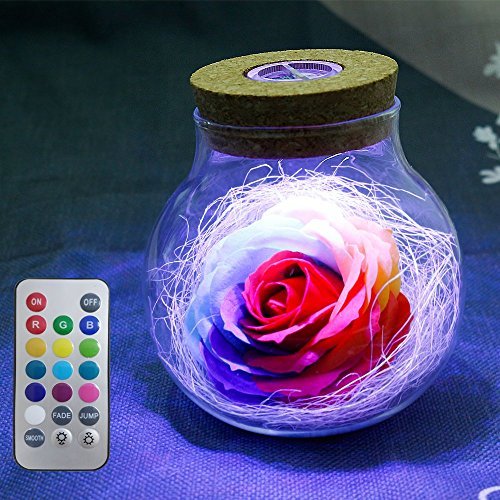 LUXJET Wish Bottle with Remote Control,DIY Handmade Preserved Rose Flower in Glass, RGB Color Changing, Ideal Gift for Valentine's Day Anniversary Birthday Wedding Centerpieces Bedside Night Light -