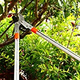 T-MAI 28~40'' Extendable Anvil Lopper, Pruning