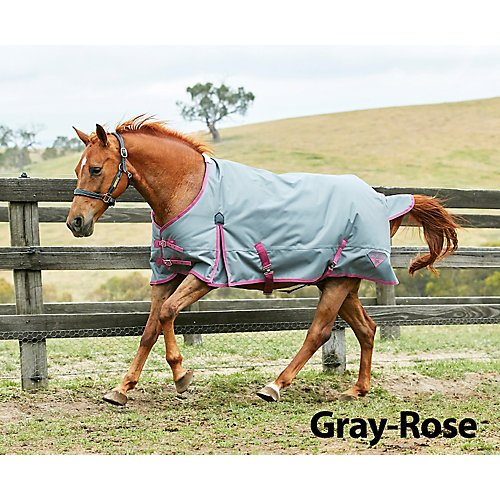 Saxon Horse Blankets - Saxon 1200D Ripstop Standard Neck Medium Turnout Blanket with Gussets, Gray/Rose, Size 75