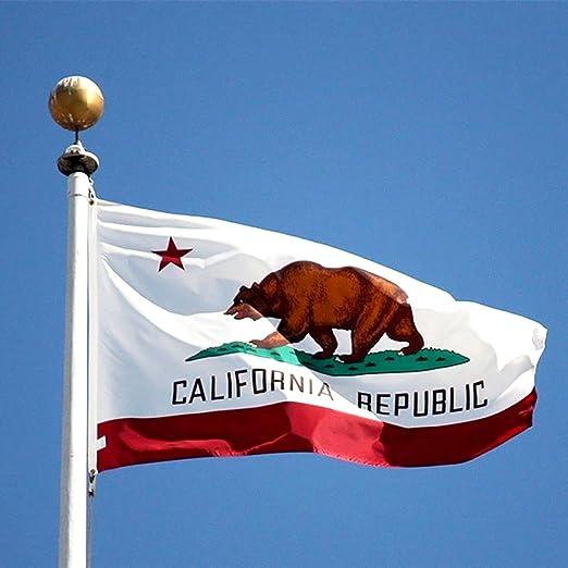 Bandera de California Bandera de poliéster DE 5 * 3 pies/150 * 90 cm Ideal para Exterior e Interior Bandera Grande de California: Amazon.es: Deportes y aire ...