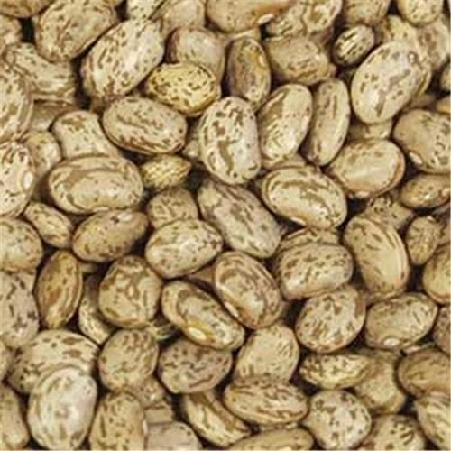 Bulk Peas And Beans, Beans, Pinto, Pack of 25, Size - #, Quantity - 1 Case by Bulk Peas And Beans