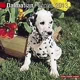 Dalmatian Puppies 2013 Wall Calendar #10204-13