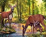 DIY 5D Diamond Painting, eZAKKA Full Square Drill Paintings Pictures Arts Craft for Home Wall Decor, Family Activities and Emotional Adjustment (Deer, 20x15inches)
