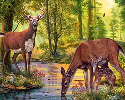 DIY 5D Diamond Painting, eZAKKA Full Square Drill Paintings Pictures Arts Craft for Home Wall Decor, Family Activities and Emotional Adjustment (Deer, 20x15inches) by eZAKKA