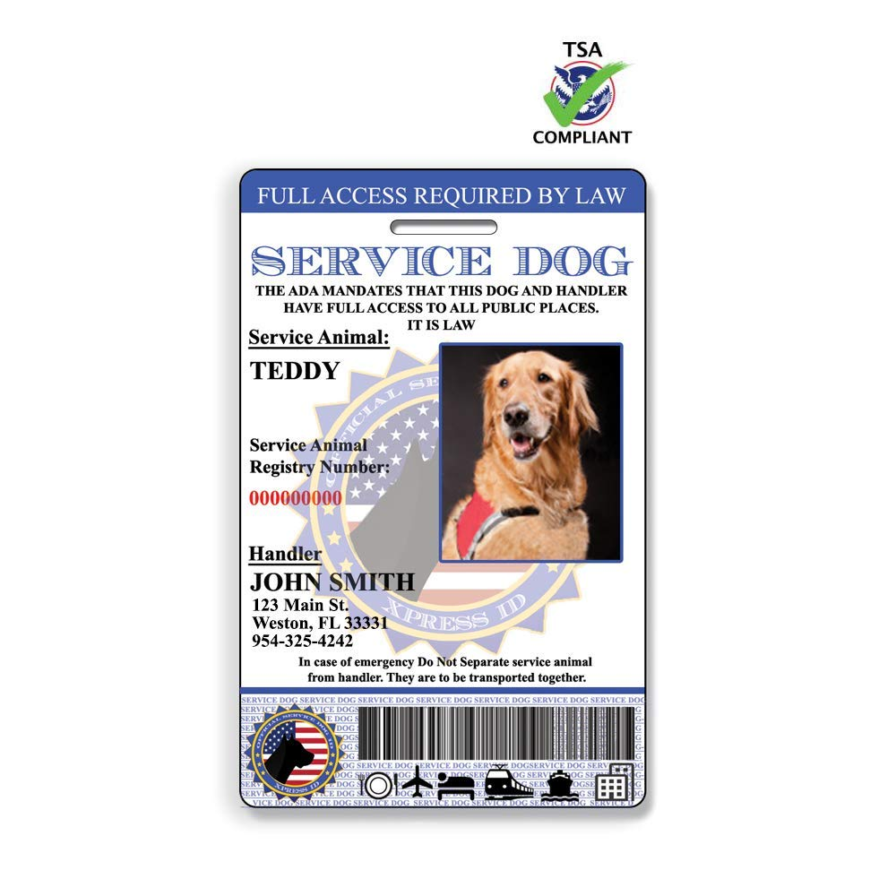 330153da19d4 Amazon.com: Holographic Service Dog ID Plus A Digital ID for Mobile  Devices  Includes Registration to Dog Registry: Pet Supplies