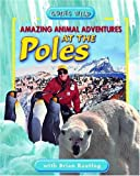 Amazing Animal Adventures at the Poles, Brian Keating, 1894856538
